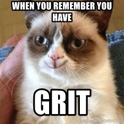 Happy Grumpy Cat 2 - when you remember you have grit