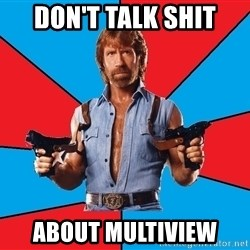 Chuck Norris  - Don't talk shit about multiview