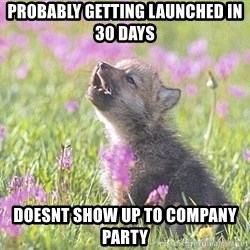 Baby Insanity Wolf - PROBABLY GETTING LAUNCHED IN 30 DAYS Doesnt show up to company party
