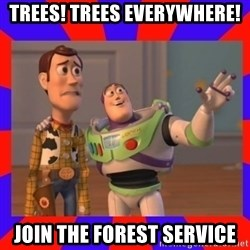 Everywhere - Trees! Trees Everywhere! Join the Forest service