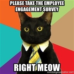 Business Cat - Please take the employee engagement survey right meow