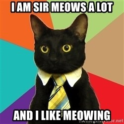 Business Cat - I am sir meows a lot And i like meowing