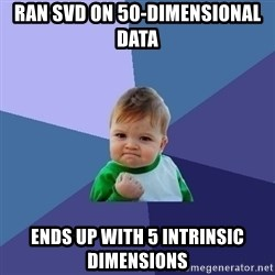Success Kid - ran svd on 50-dimensional data ends up with 5 intrinsic dimensions