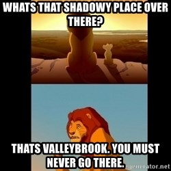 Lion King Shadowy Place - Whats That shadowy place over there? Thats valleybrOok. You must never go there.
