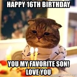 Birthday Cat - Happy 16th birthday You my favorite son!                       Love you