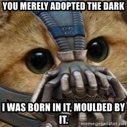 bane cat - you merely adopted the dark I was born in it, moulded by it.