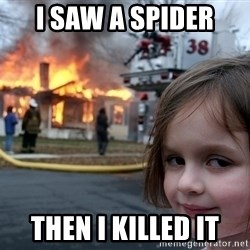 Disaster Girl - I SAW A SPIDER  Then I killed it