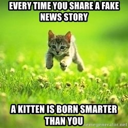 God Kills A Kitten - Every time you share a fake news story a kitten is born smarter than you