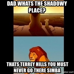 Lion King Shadowy Place - Dad whats the shadowy place?     thats terrey hills you must never go there simba