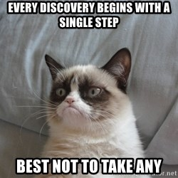 Grumpy cat good - Every discovery begins with a single step best not to take any