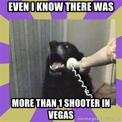 Yes, this is dog! - even i know there was more than 1 shooter in vegas