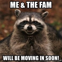 evil raccoon - me & the fam  will be moving in soon!