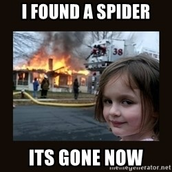 burning house girl - i found a spider its gone now