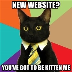 Business Cat - New website? you've got to be kitten me