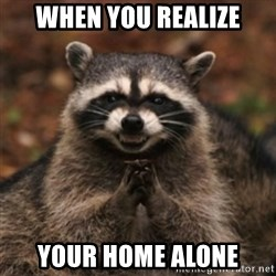 evil raccoon - when you realize your home alone