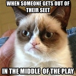 Grumpy Cat  - When someone gets out of theiR seet  In the middle  of the pLay