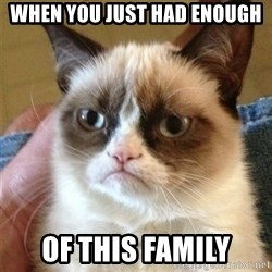 Grumpy Cat  - when you just had enough of this family