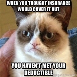 Grumpy Cat  - When you thought INSURANCE would cover it but   You haven't met your deductible