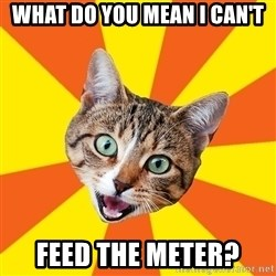 Bad Advice Cat - what do you mean I can't Feed the Meter?