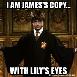 Harry Potter Come At Me Bro - i am James's copy... With lily's eyes