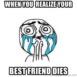 Crying face - when you  realize your best friend dies