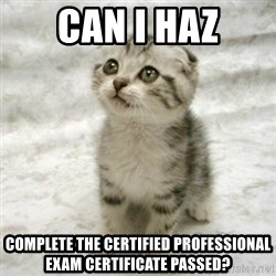 Can haz cat - CAN I HAZ complete the Certified Professional Exam Certificate PASSED?