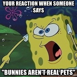 "Spongebob Rage - Your reaction when someoNe says ""bunnIes aren't real pets"""