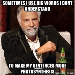 The Most Interesting Man In The World - SOMETIMES I USE BIG WORRS I DONT UNDERSTAND To make my sentences more photosynthesis