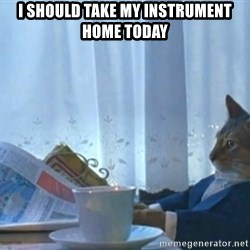 newspaper cat realization - I should take my instrument home today