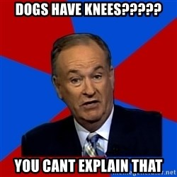 Bill O'Reilly Proves God - DOGS HAVE KNEES????? YOU CANT EXPLAIN THAT