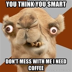 Crazy Camel lol - you think you smart don't mess with me I need coffee
