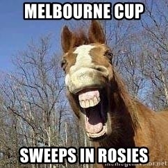 Horse - melbourne cup  sweeps in rosies