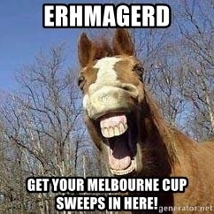Horse - Erhmagerd get your melbourne cup sweeps in here!
