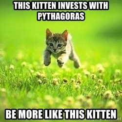 God Kills A Kitten - this kitten invests with pythagoras Be more like this kitten