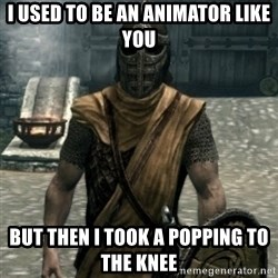 skyrim whiterun guard - I used to be an animator like you but then I took a popping to the knee