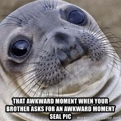 Awkward Moment Seal - that awkward moment when your brother asks for an awkward moment seal pic