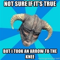 skyrim stan - Not sure if it's true but I took an arrow to the knee