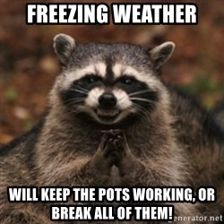 evil raccoon - Freezing weather Will keep the POTS working, or break all of them!