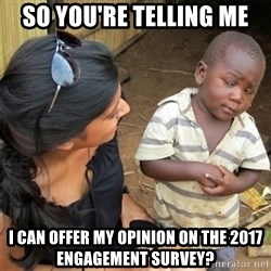 So You're Telling me - sO yOU'RE TELLING ME i CAN OFFER MY OPINION ON THE 2017 eNGAGEMENT sURVEY?