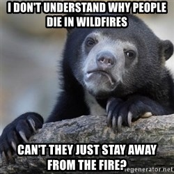 Confession Bear - i don't understand why people die in wildfires can't they just stay away from the fire?