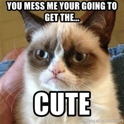 Grumpy Cat  - you mess me your going to get the... cute