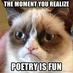 Angry Cat Meme - The moment you REALIZE poetry is fun