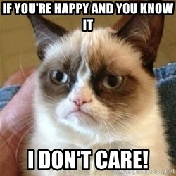 Grumpy Cat  - If you're happy and you know it I don't care!