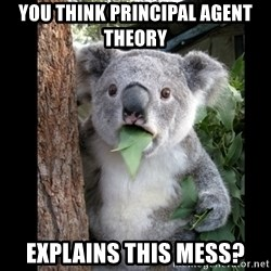 Koala can't believe it - You think Principal agent theory  explains this mess?