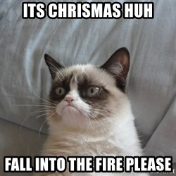 Grumpy cat good - its chrismas huh fall into the fire please