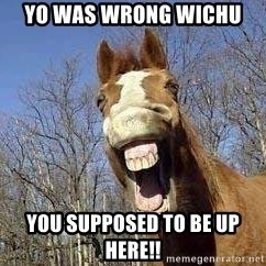 Horse - yo was wrong wichu  you supposed to be up here!!