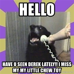 Yes, this is dog! - hello have u seen Derek lately!! I miss my my LITtle chew toy