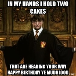 Harry Potter Come At Me Bro - in my hands i hold two cakes that are heading your way             Happy birthday ye mudblood
