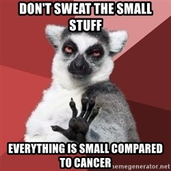 Chill Out Lemur - DON'T SWEAT THE SMALL STUFF EVERYTHING IS SMALL COMPARED TO CANCER