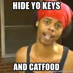 Hide Yo Kids - Hide yo keys And catfood